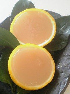 柚子の水羊羹